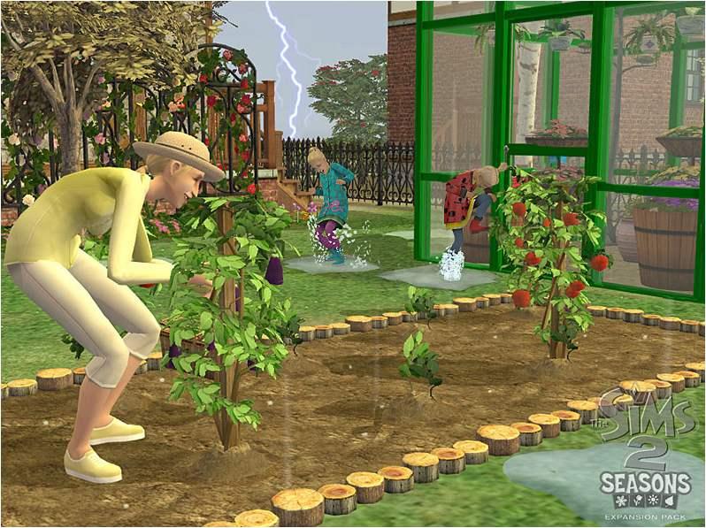 jardin01.jpg